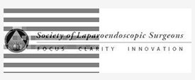 society of laparoendoscopic surgeons